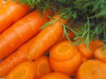 红萝卜 库存图片