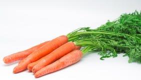 红萝卜10 库存图片
