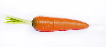 红萝卜 图库摄影