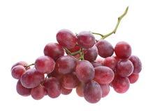 红葡萄束 免版税库存照片
