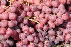 红葡萄果子 免版税库存图片
