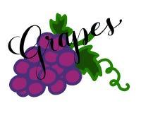 红葡萄的例证与字法文本的 免版税图库摄影