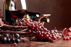 红葡萄酒和新鲜的葡萄与烘干藤离开 免版税库存图片