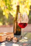 红葡萄酒和红色书 库存图片