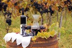 红葡萄酒和葡萄在桶 免版税库存照片
