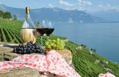 红葡萄酒和葡萄 库存图片