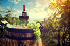 红葡萄酒瓶和玻璃wodden桶 库存图片