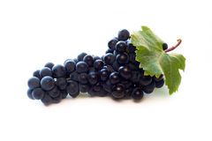 红葡萄酒葡萄 免版税库存图片
