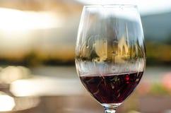 红葡萄酒玻璃特写镜头  免版税图库摄影