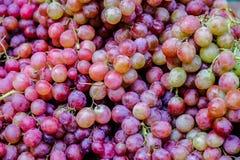 红葡萄,特写镜头背景 库存照片