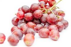 红葡萄 库存照片