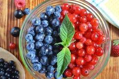 红蓝色颜色莓果在黑褐色木背景健康食物的 免版税图库摄影