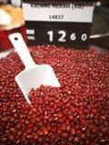 红豆 免版税库存照片