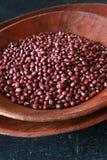 红豆 免版税库存图片