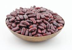 红豆azuki豆 免版税图库摄影