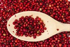 红辣椒和匙子 免版税图库摄影