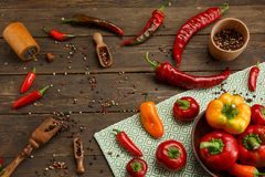 红辣椒和色的干胡椒在木纹理 免版税图库摄影