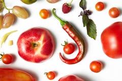 红辣椒和蕃茄在白色背景 有机模式 库存照片