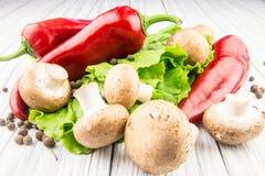 红辣椒和蘑菇 库存图片