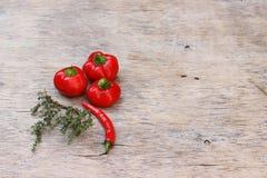 红辣椒和麝香草 库存图片
