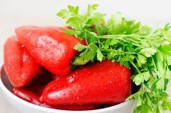 红辣椒和绿色荷兰芹 库存图片