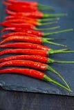 红辣椒是黑暗的背景 图库摄影