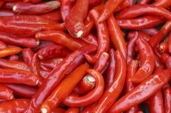 红辣椒特写镜头,纹理,食物背景 免版税库存照片