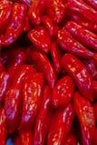 红辣椒美好的稀薄的荚菜基地明亮的发光的背景基地设计烹饪许多果子盘子农夫市场 库存照片