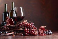 红酒和新鲜的葡萄与烘干藤叶子 库存图片