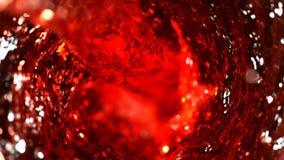 红酒旋转细节  库存照片