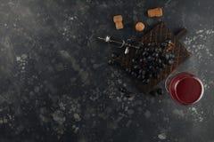 红酒用葡萄和葡萄酒拔塞螺旋在黑暗的背景 库存图片