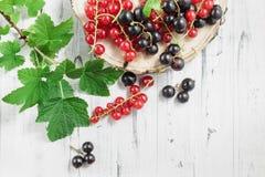 红醋栗和黑醋栗在白色木背景 库存照片