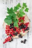 红醋栗和黑醋栗在白色木背景 免版税图库摄影