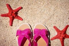 红颜色关闭两个海星在与板岩的海滩在海背景夏令时 概念旅游业 免版税图库摄影