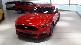 红颜色在陈列室的Ford Mustang汽车 库存照片