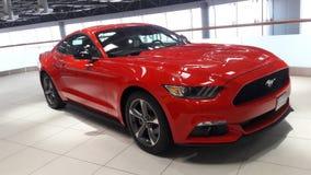 红颜色在陈列室的Ford Mustang汽车 免版税图库摄影