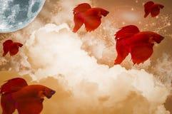红颜色战斗的鱼,移动在天空中,与云彩、月亮、星和波浪 免版税图库摄影