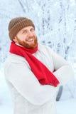 红头发人有胡子的人的画象 免版税库存图片