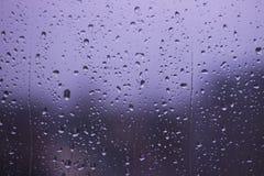 红绿灯雨天 免版税库存照片