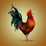 红绿色公鸡 免版税库存图片
