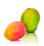 红黄色和绿色芒果 库存照片