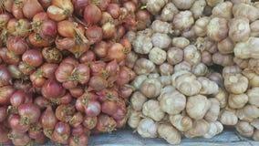 红洋葱和大蒜 图库摄影