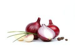 红洋葱用查出的大蒜和香料 免版税库存图片