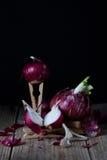 红洋葱 关闭新鲜的有机菜 春天收获艺术,设计 免版税库存图片