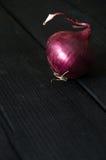 红洋葱 免版税库存图片