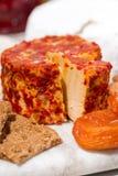 纤巧乳酪用草本和快餐,特写镜头 免版税库存照片