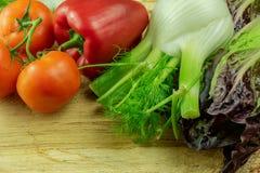 纤巧的菜-茴香、蕃茄、胡椒和沙拉 库存照片