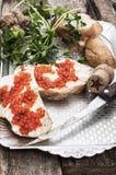 纤巧红色鱼子酱 库存图片