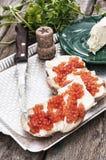 纤巧红色鱼子酱 图库摄影
