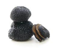 纤巧蘑菇黑色块菌 库存照片